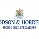 DODSON & HORRELL LOGO BLUE non shadow